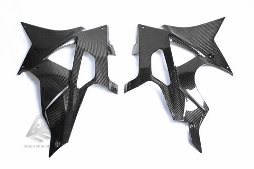 BMW S1000RR 2009-2014 Carbon Belly Pan Fairing Cowling